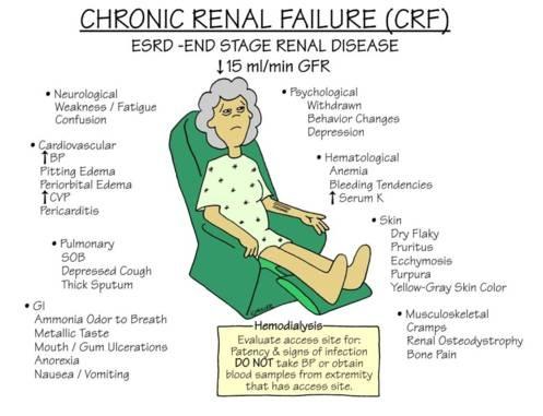 Reasons For Chronic Renal Failure Dr Satish Nephrologist Transplant Physician